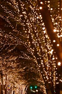 東京丸の内の街路樹のイルミネーションの写真素材 [FYI01726722]
