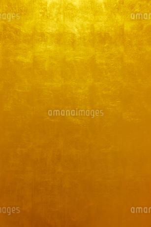 金箔の金屏風の写真素材 [FYI01726795]