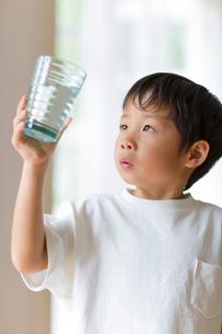 室内でコップの水を観察する子供の写真素材 [FYI01726875]