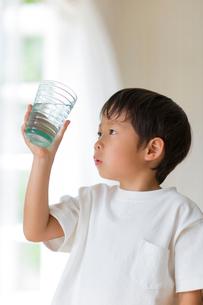 室内でコップの水を観察する子供の写真素材 [FYI01726947]