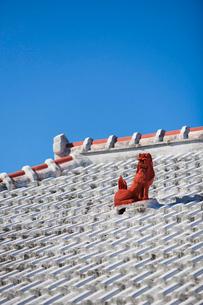 屋根上にいるシーサーの写真素材 [FYI01726976]