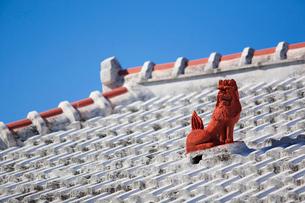 屋根上にいるシーサーの写真素材 [FYI01726984]