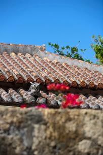 屋根上にいるシーサーの写真素材 [FYI01727291]