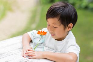 庭でコップの花を観察する笑顔の子供の写真素材 [FYI01727302]
