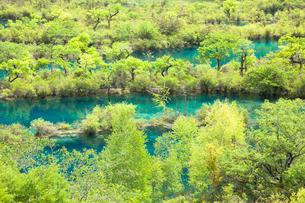樹正溝の湖の写真素材 [FYI01727550]