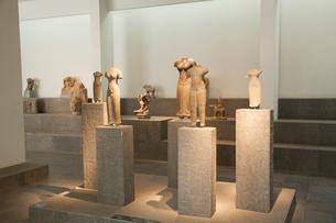 歴史博物館内部の写真素材 [FYI01727596]