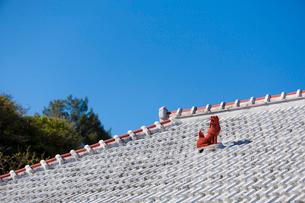 屋根上にいるシーサーの写真素材 [FYI01727830]