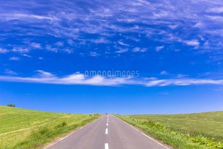 丘の町・美瑛の田園風景の写真素材 [FYI01730164]