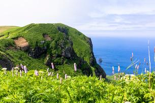 礼文島・桃岩周辺散策路の写真素材 [FYI01730496]