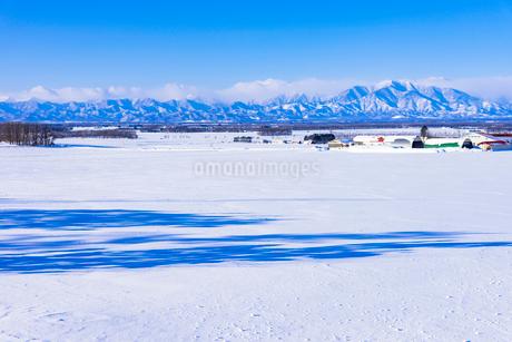 北の大地の雪景色の写真素材 [FYI01730628]