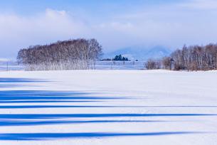 北の大地の雪景色の写真素材 [FYI01730905]