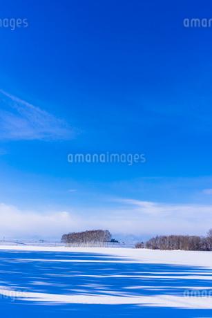 北の大地の雪景色の写真素材 [FYI01731338]
