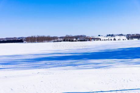 北の大地の雪景色の写真素材 [FYI01732006]