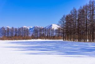 北の大地の雪景色の写真素材 [FYI01732009]