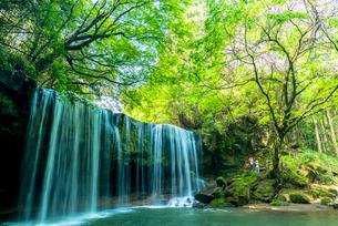 小国町の鍋ケ滝の写真素材 [FYI01732323]