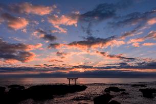 未明の大洗海岸・神磯の鳥居の写真素材 [FYI01732346]