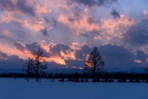 北の大地の夕暮れの写真素材 [FYI01732355]