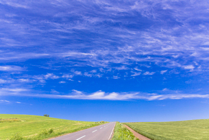 丘の町・美瑛の田園風景の写真素材 [FYI01732804]