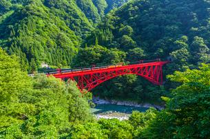 新山彦橋を行く黒部峡谷鉄道の写真素材 [FYI01732921]