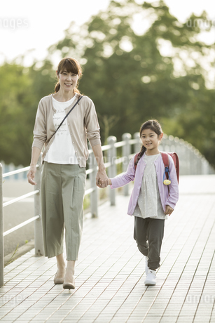 手をつないで歩く親子の写真素材 [FYI01733058]