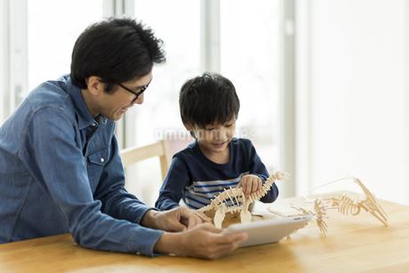 恐竜の模型で遊ぶ親子の写真素材 [FYI01733212]