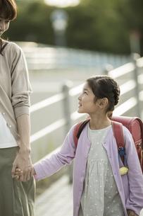 手をつないで歩く親子の写真素材 [FYI01733233]