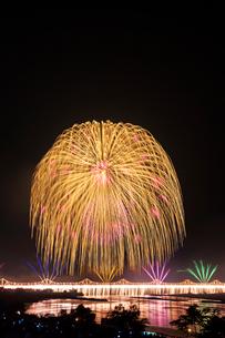 長岡まつりの花火大会の写真素材 [FYI01733252]