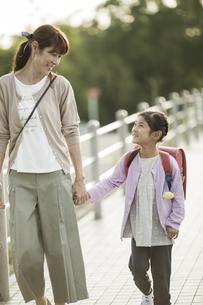手をつないで歩く親子の写真素材 [FYI01733297]