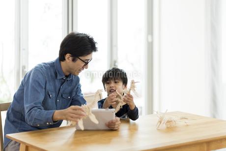 恐竜の模型で遊ぶ親子の写真素材 [FYI01733373]