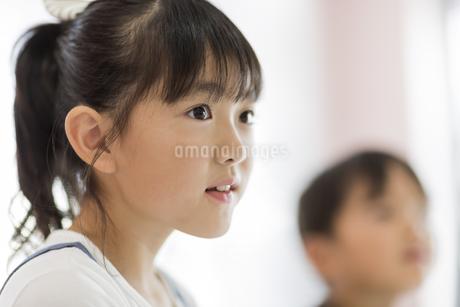 教室で授業を受ける女の子の写真素材 [FYI01733422]