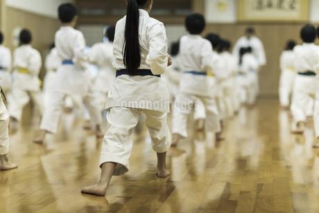 空手の稽古をする子供たちの写真素材 [FYI01733423]