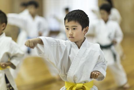 空手の稽古をする男の子の写真素材 [FYI01733468]