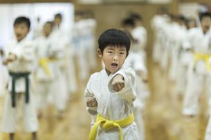 空手の稽古をする男の子の写真素材 [FYI01733469]