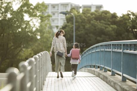 手をつないで歩く親子の写真素材 [FYI01733488]