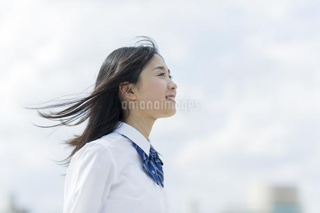 笑顔の女子学生の写真素材 [FYI01733490]