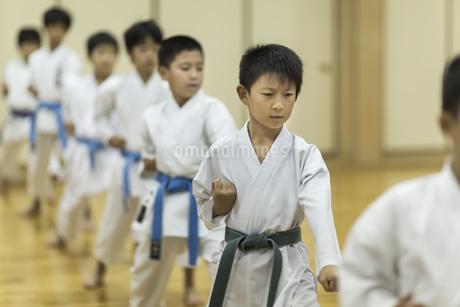 空手の稽古をする子供たちの写真素材 [FYI01733501]