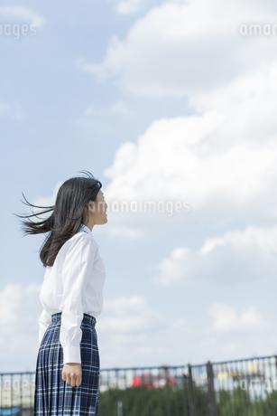 笑顔の女子学生の写真素材 [FYI01733518]