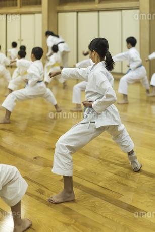 空手の稽古をする子供たちの写真素材 [FYI01733525]