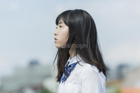 遠くを見つめる女子学生の写真素材 [FYI01733529]