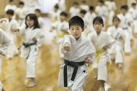 空手の稽古をする子供たちの写真素材 [FYI01733533]