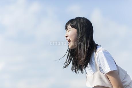 叫ぶ女の子の写真素材 [FYI01733572]