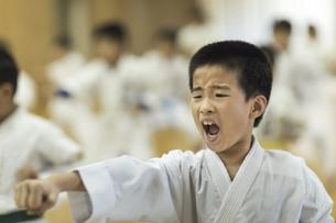空手の稽古をする男の子の写真素材 [FYI01733579]