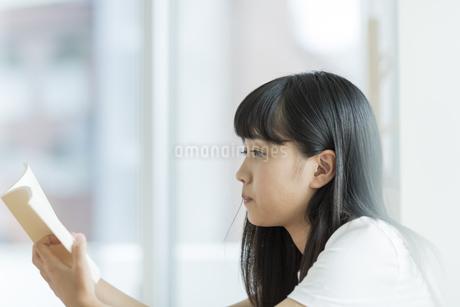 読書をする女の子の写真素材 [FYI01733592]
