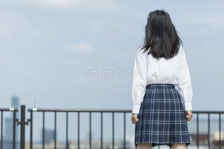 屋上に立つ女子学生の後姿の写真素材 [FYI01733593]