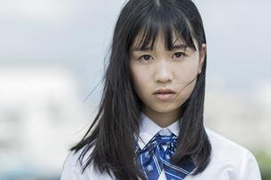 真剣な表情の女子学生の写真素材 [FYI01733613]
