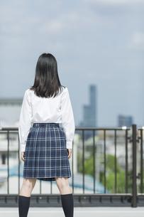 屋上に立つ女子学生の後姿の写真素材 [FYI01733615]