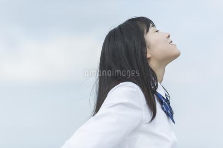 笑顔の女子学生の写真素材 [FYI01733618]