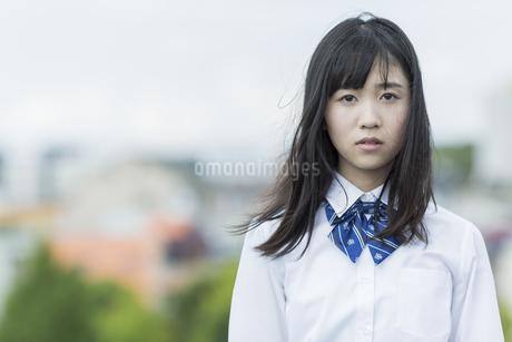 真剣な表情の女子学生の写真素材 [FYI01733623]