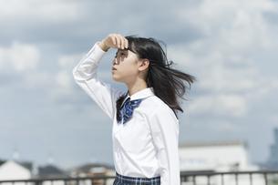 手をかざす女子学生の写真素材 [FYI01733630]