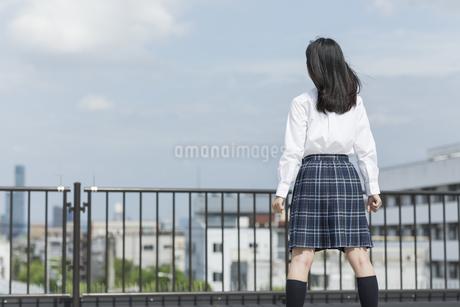 屋上に立つ女子学生の後姿の写真素材 [FYI01733664]